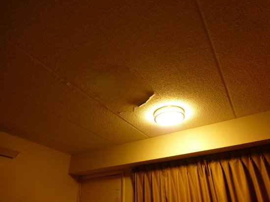 Red Roof Inn Charleston - Kanawha City, WV: Paint peeling ceiling!
