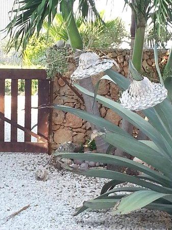 Bridanda Apartments Bonaire: you can leave you hat....