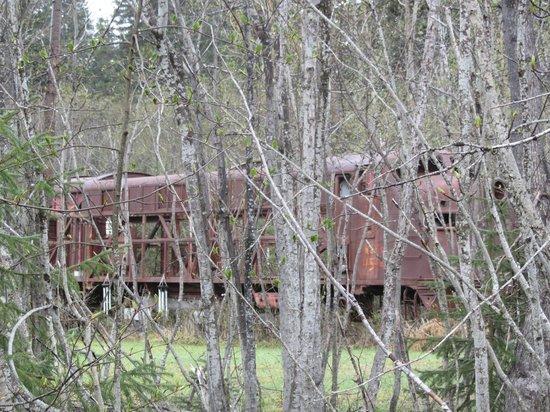Bear Lake Lodgings B&B : Old locomotive nearby off tracks in  woods; strange sight.