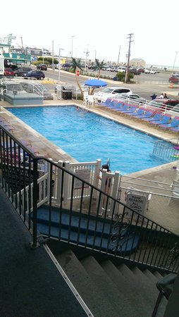 Windward Motel: A beautiful pool, tanning chairs, and a short walk to the boardwalk and beach.