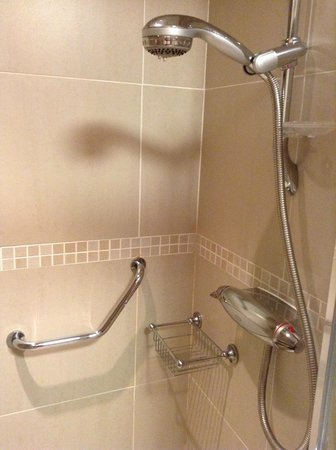 Curran Court Hotel : walk in adjustable height shower with safety rail