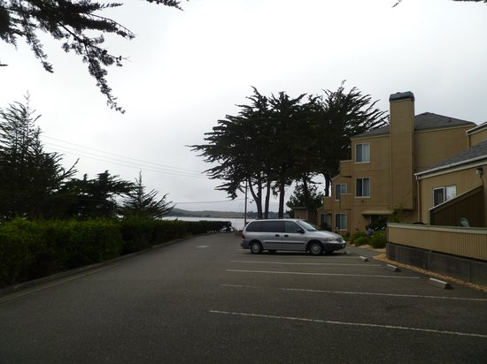 Bodega Coast Inn & Suites : View of parking lot, bay is in background.