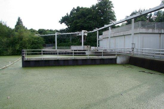 Blocklander Entwasserungsanstalt: Einlauf neues Schöpfwerk