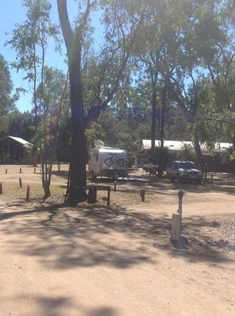 Takarakka Bush Resort & Caravan Park : excellent, large powered sites, lots of shade when needed.