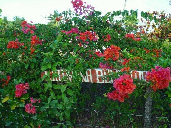 Kia Orana Bungalows: entry sign