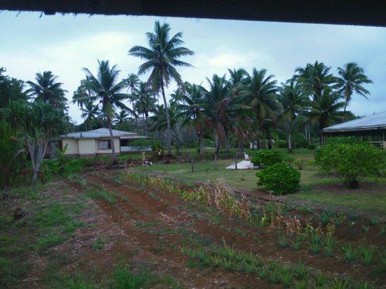 Kia Orana Bungalows: garden