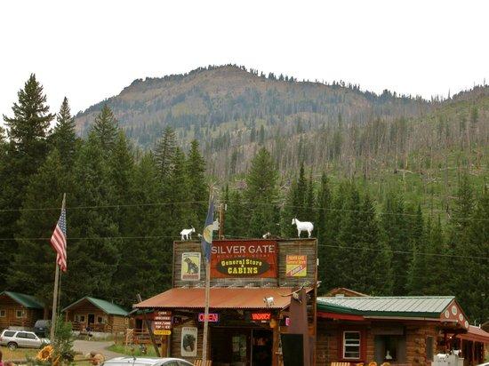Pine Edge Cabins: General Store