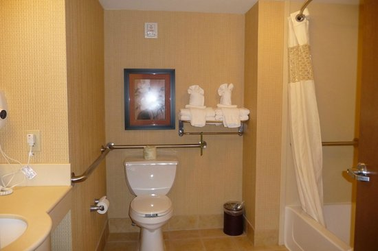 Hampton Inn Utica : Bathroom