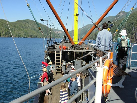 Get West Day Adventure Cruises: View over the working deck