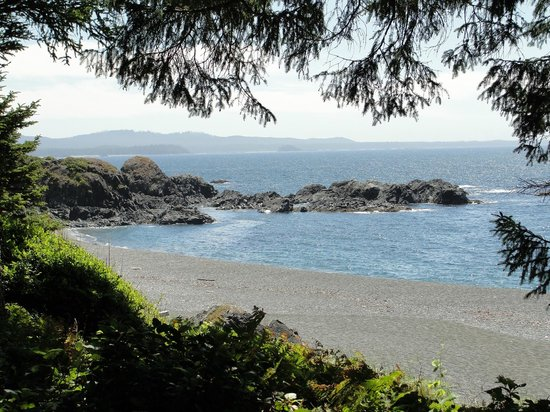 Get West Day Adventure Cruises: View of the Pacific from Friendly Cove