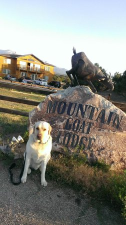 Mountain Goat Lodge: entrance
