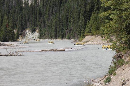 Wild Water Adventures: Winding around Kicking Horse River