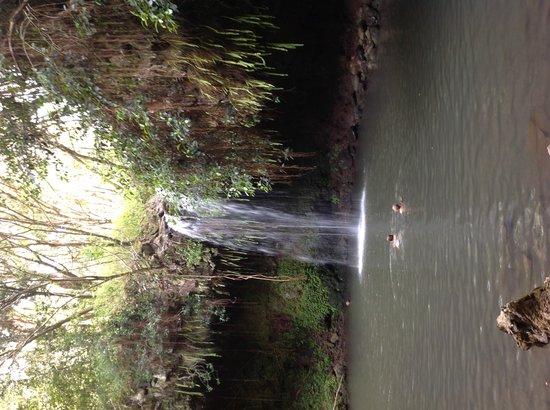 Paia, HI: Twin Falls