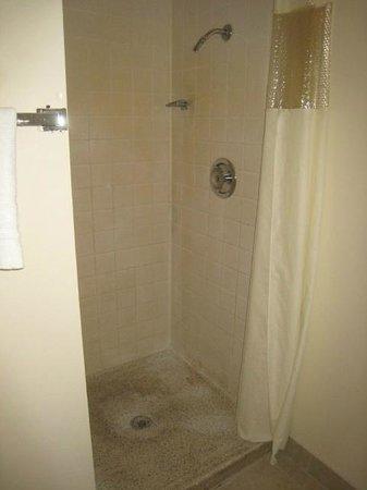 Tiki Lodge Motel: Room 203 Shower