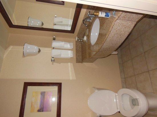 Hilton Garden Inn Halifax Airport: Clean bathroom.