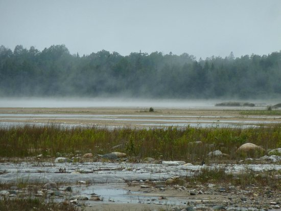 Misery Bay Provincial Park: The fog rolling in.