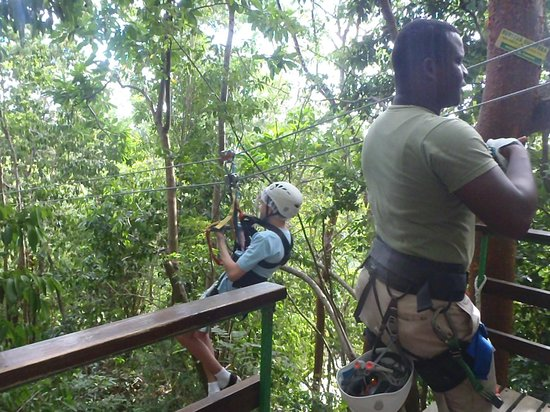 Rainforest Zip Line at Mystic Mountain : Here we go
