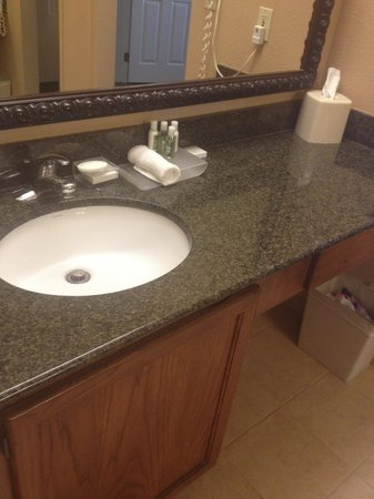 Homewood Suites Seattle - Tacoma Airport / Tukwila: bathroom vanity