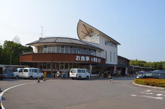 Kihocho Umigame Park: o local da parada 2013.08.13