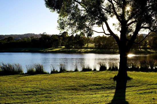Lilydale Lake: Popular Picnic Spot