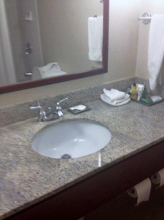 Hilton Vancouver Airport: bathroom vanity