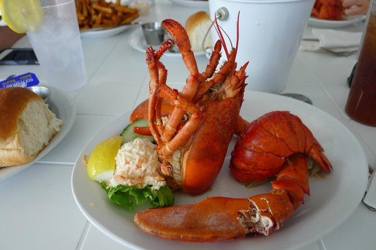Sea Gull Restaurant: yummy lobster meal