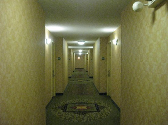 Hallway - Picture of Hilton Garden Inn Chicago Downtown/Magnificent ...