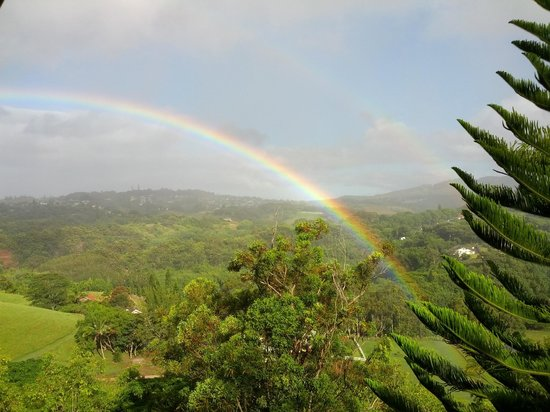 Marjorie's Kauai Inn: Rainbows can be seen from the balcony almost every morning
