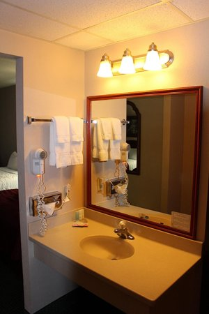 Clarion Hotel and Convention Center: Sink area