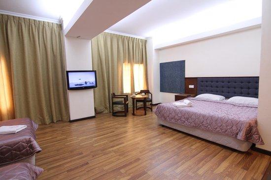 Iris House Hotel: Room