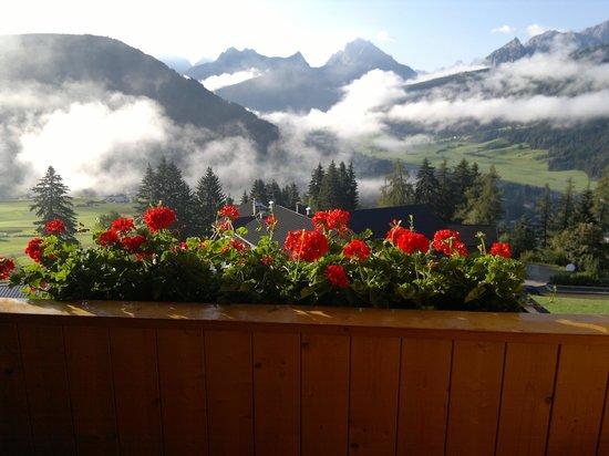 Hotel Alpen Tesitin: dalla camera