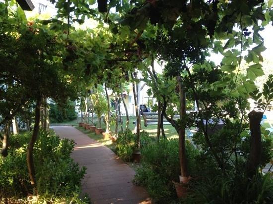 Ariadimari Hotel: ariadimari, garden area