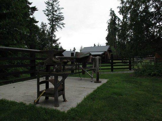 Bond Ranch Retreat: More ranch