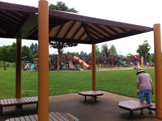 Yukawa Furusato Park: 遊具が充実