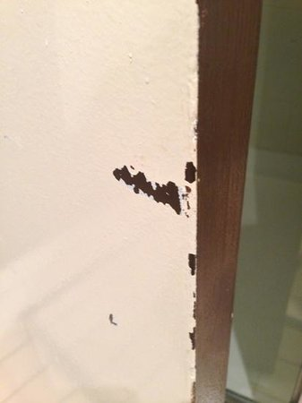 Mercure North Melbourne: badly chipped paint on bathroom door