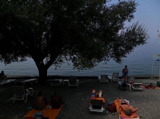 Hotel Metropol: beach