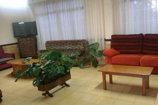 Figuera Park Hotel: lounge