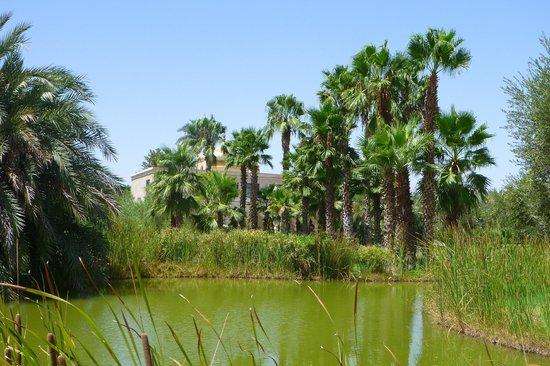 Palais Namaskar: les jardins