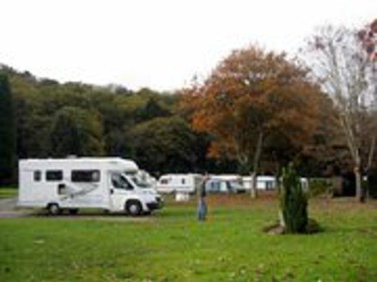 Riverside Caravan Park: Hardstanding Pitch