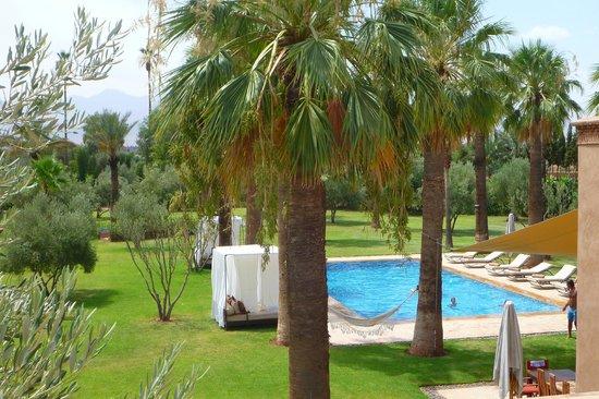 Villa Zin : la piscine