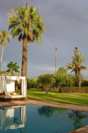 Villa Zin : le jardin