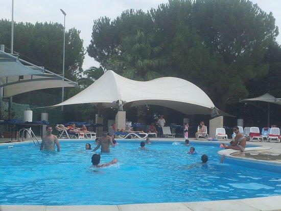 Villa Orchidea : Stunning Pool