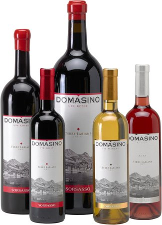 Domaso, Italia: Our wine: Domasino