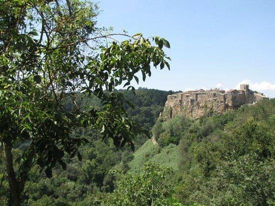 Locanda Dell'orchidea Selvaggia: The lovely view to historic Calcata