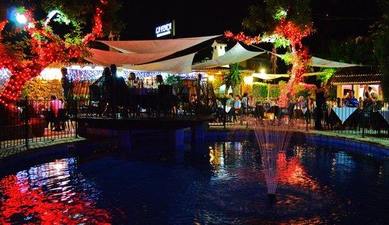 La Finca Restaurant: garden at night