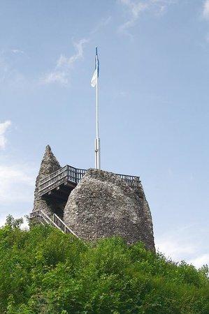 Dollen-Hof: the ruins of the castle in Eversberg