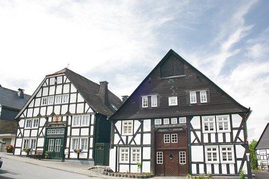 Dollen-Hof: view of the village