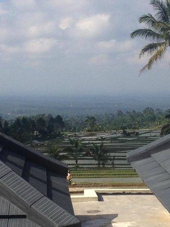 Hotel Batukaru: Vue d'une chambre classique