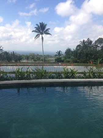 Hotel Batukaru: Vue du petit-déjeuner, depuis la terrasse du restaurant