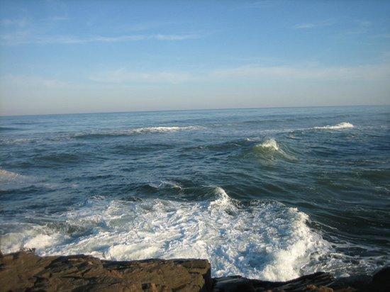 Praia Guarita: Atlantic ocean at Parque Estadual da Guarita-Torres